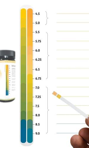 Escala ph urina e saliva